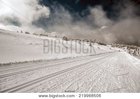 nice winter day with snow, few trees, blue sky with clouds and cross-country skiing track with skiers on the background near Praded hill in Jeseniky mountains in Czech republic