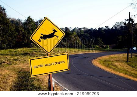 Beware deer crossing the road sign isolated on blue sky