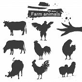 Symbol roosters, hen, chicken and cows. Set of farm animals. Silhouette. Hand drawing birds family and cattle. Rooster fighter, modest brood, small chick, chicken feet, cows and ribbon for your design poster