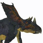 Chasmosaurus Dinosaur Head 3D illustration - Chasmosaurus was a herbivorous ceratopsian dinosaur that lived in Alberta, Canada during the Cretaceous period. poster
