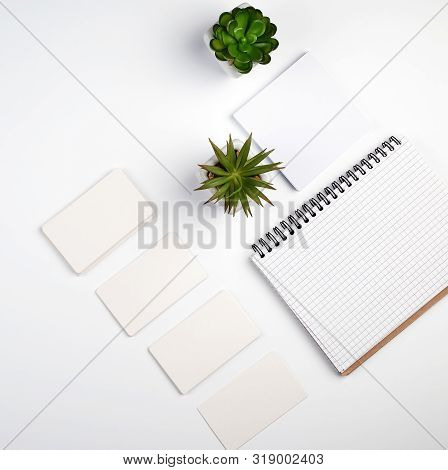 Empty Paper Rectangular Business Business Cards, Open Notebook And Pots With Green Plants On A White