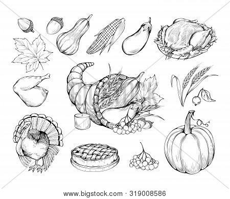 Thanksgiving Hand Drawn Vector Symbols Set. Natural Food, Vegetables And Traditional Dishes Sketch I