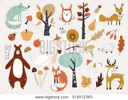 Cute Autumn Woodland Animals And Floral Forest Design Elements. Set Of Cute Autumn Cartoon Character
