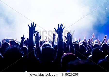 crowd at the rock concert