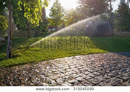 Sprinklers Automatic Watering Grass On A Hot Summer Day. Savings Of Water From Sprinkler Irrigation
