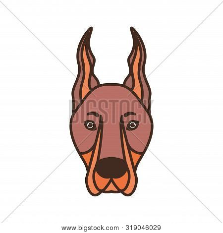 Head Of Cute Doberman Dog On White Background Vector Illustration Design