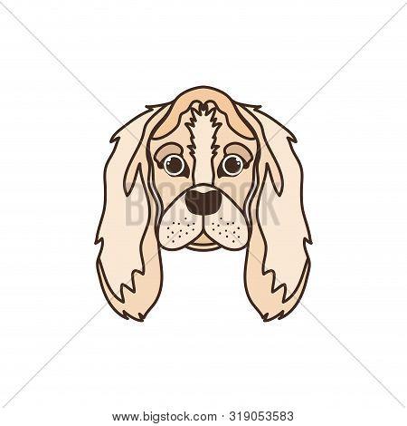 Head Of Cute Cocker Spaniel Ingles Dog On White Vector Illustration Design