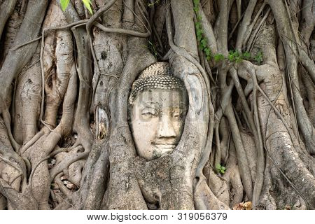 Ayutthaya Buddha Head statue with trapped in Bodhi Tree roots at Wat Maha That (Ayutthaya), Thailand