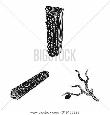 Vector Illustration Of Hardwood And Construction Icon. Collection Of Hardwood And Wood Stock Vector