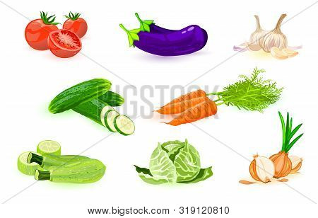 Big Set With Different Vegetables: Red Tomato, Eggplant, Garlic, Cucumber, Carrot, Courgette, White