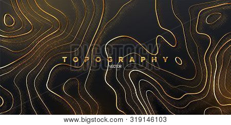 Topography Relief. Abstract Background. Vector Illustration Of Curvy Golden Paths Textured With Shim