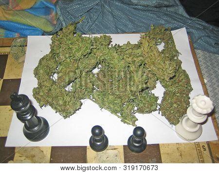 Cannabis medical bio Cretan purple haze in a chess macro vintage old poster