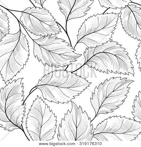 Floral Seamless Pattern. Graden Leaves Tile Drawn Background.