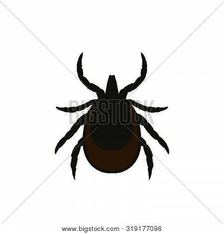 Ticks Icon. Mite Warning Sign. Encephalitis Parasite Icon. Vector Illustration Of Tick