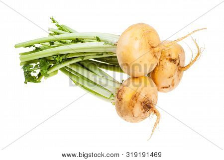 Bunch Of Fresh Yellow Turnips With Stems Isolated On White Background