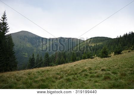 View While Climbing Mount Hoverla. View Of The Mountain, Forests And Clouds. Ukrainian Carpathians.