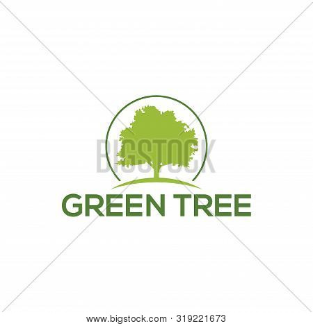 Tree Logo Template. Nature Icon Design - Vector, Tree Icon Concept Of A Stylized Tree With Leaves, O