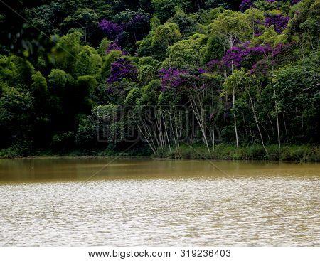 Lago Parque Da Lajinha Juiz De Fora