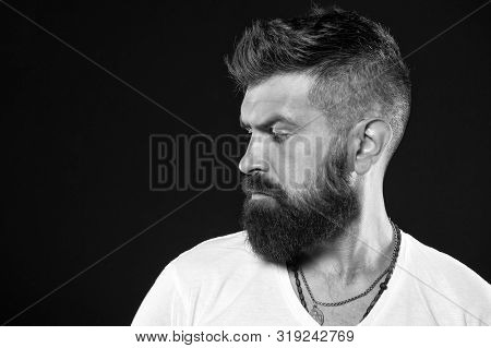 His Beard Is Styled Appropriately. Brutal Hipster With Textured Beard Hair On Black Background. Bear