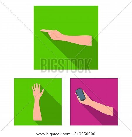 Isolated Object Of Animated And Thumb Symbol. Collection Of Animated And Gesture Stock Symbol For We