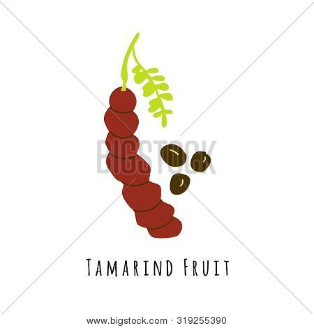 Tamarind Fruit Flat Vector Illustration. Cartoon Slices Of Exotic, Tropical Fresh Fruit. Clipart Wit