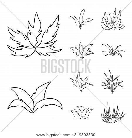 Vector Illustration Of Hedge And Shrub Logo. Collection Of Hedge And Floral Vector Icon For Stock.