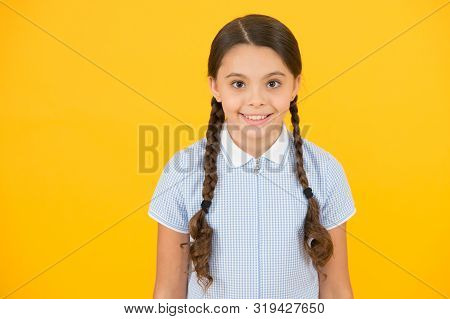 Tidy Hairstyle. Little Girl With Cute Braids. Beautiful Braids. Braided Hairstyle Concept. Girl With