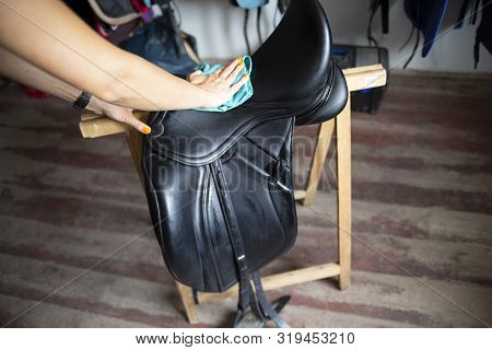 Saddle. Cleaning And Maintenance Of The Saddle. The Woman Rider Cares For The Saddle