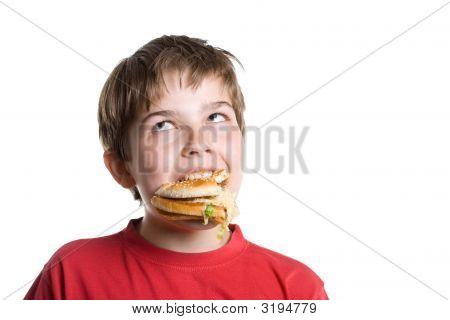 The Boy Eating A Hamburger.