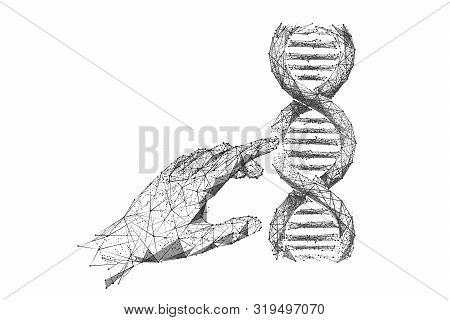 Genetic Analysis And Research Low Poly Wireframe Illustration. Polygonal Dna Chromosome Analyzing Me
