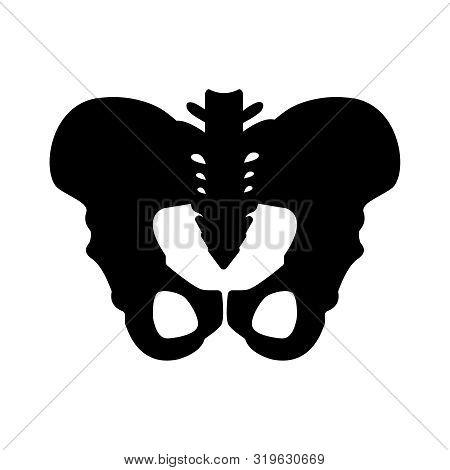 Black Silhouette Of Hip Bones Structure. Main Pelvic Bones - Sacrum, Ilium, Coccyx, Pubis, Ischium.