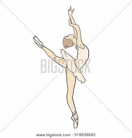 Ballerina Ballet Tutu Vector Photo Free Trial Bigstock