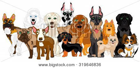 Vector Illustration Of The Group Of The Dogs Of The Varied Sorts