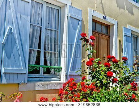 Sunny View  Of A Blue Window With Shutters Of An Old Farm House, With A Bush Of Red Roses And Many B