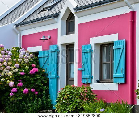 Sunny View Of A Pink House Front With A Blue Window With Shutters And A Bush Of Pink Flowers And Man