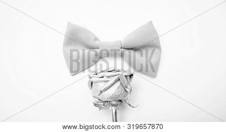 Esthete detail. Fix bow tie. Groom wedding. Tying bow tie. Textile fabric bow close up. Modern formal style. Menswear clothes. Perfect outfit. Wedding accessories. Fashion accessory poster