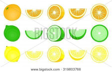 Orange,citrus Set. Modern Flat Cartoons Style Vector Illustration Icons. Isolated On White Backgroun