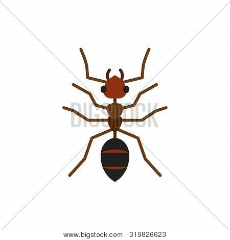 Ant Single Flat Icon. Insect Simple Sign In Cartoon Style. Wildlife Pictogram Symbol. Entomology Clo