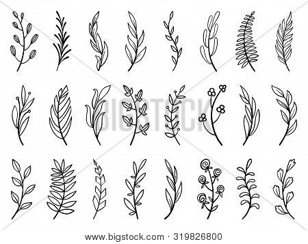 Wreath Floral Branch In Hand Drawn Style. Outline Doodle Icons Set. Flower Line Sign Scribble Brush