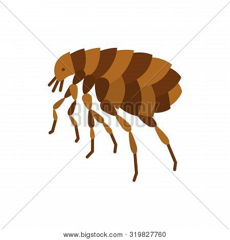 Flea Single Flat Icon. Insect Simple Sign In Cartoon Style. Parasite Symbol. Wildlife Pictogram. Ent
