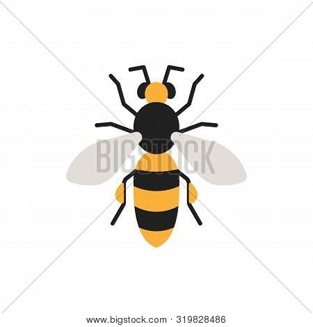 Honey Bee Single Flat Icon. Wildlife Simple Sign In Cartoon Style. Insect Pictogram Symbol. Entomolo
