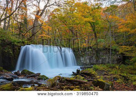 Choshi Otaki Falls ( Oirase Stream ) In Sunny Day, Beautiful Fall Foliage Scene Autumn Colors. Fores
