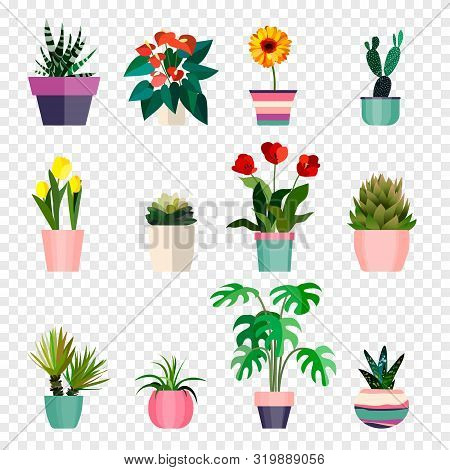 Set Of Green House Plants In Pots. Outdoor And Indoor Landscape Garden Flowers With Leaf Icon. Flowe