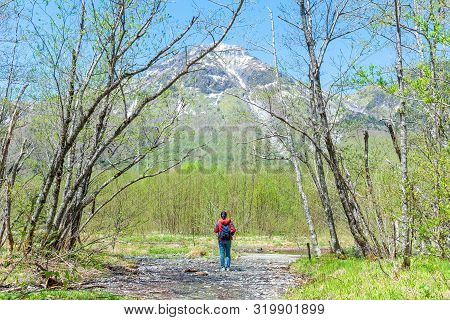 Fefemale Hiker Standing In The Forest Of Kamikochi In Northern Japan Alps.male Hiker Standing In The