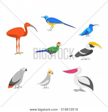 Cartoon Color Exotic Bird Icon Set Include Of Pelican Wildlife Tropical Jungle Concept Flat Design.