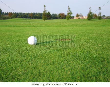 Ball On Green