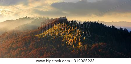 Autumnal Mountain Panorama At Foggy Sunrise. Beautiful Nature Scenery. Cloudy Weather, Forests In Fa