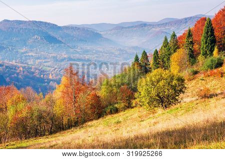 Mountainous Autumn Countryside In The Mourning. Magical Hazy Weather With Clouds On The Blue Sky Abo