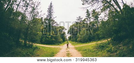 A Woman Stands At The Crossroads Of Two Forest Roads. The Girl At The Crossroads. The Choice Of The