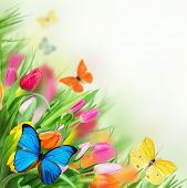 Spring flowers with exotic butterflies poster